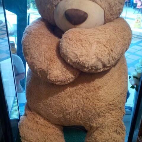 giant bear