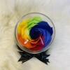 rainbow carina2