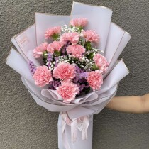 1doz. carnation