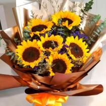 Sunflower half dozen